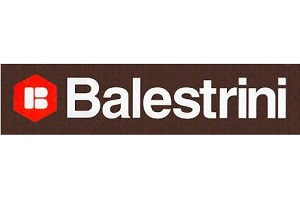 Balestrini Used Woodworking, Metalworking, Stone & Glass Machinery parts